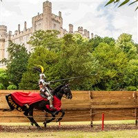 Home Counties' Castles & Capital Cruise