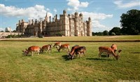 Mouth-Watering Melton Mowbray & Burghley