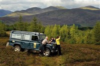 Spectacular Scotland on Safari