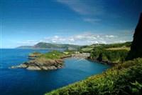 Horticulture & Heritage in Devon